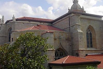 Tejas-Borja